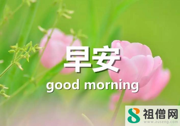 每天一条正能量早安简短句子 早安朋友圈正能量励志配文句子