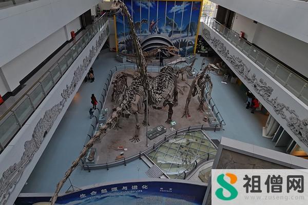 中国地质大学逸夫博物馆在哪里 中国地质大学逸夫博物馆好玩吗